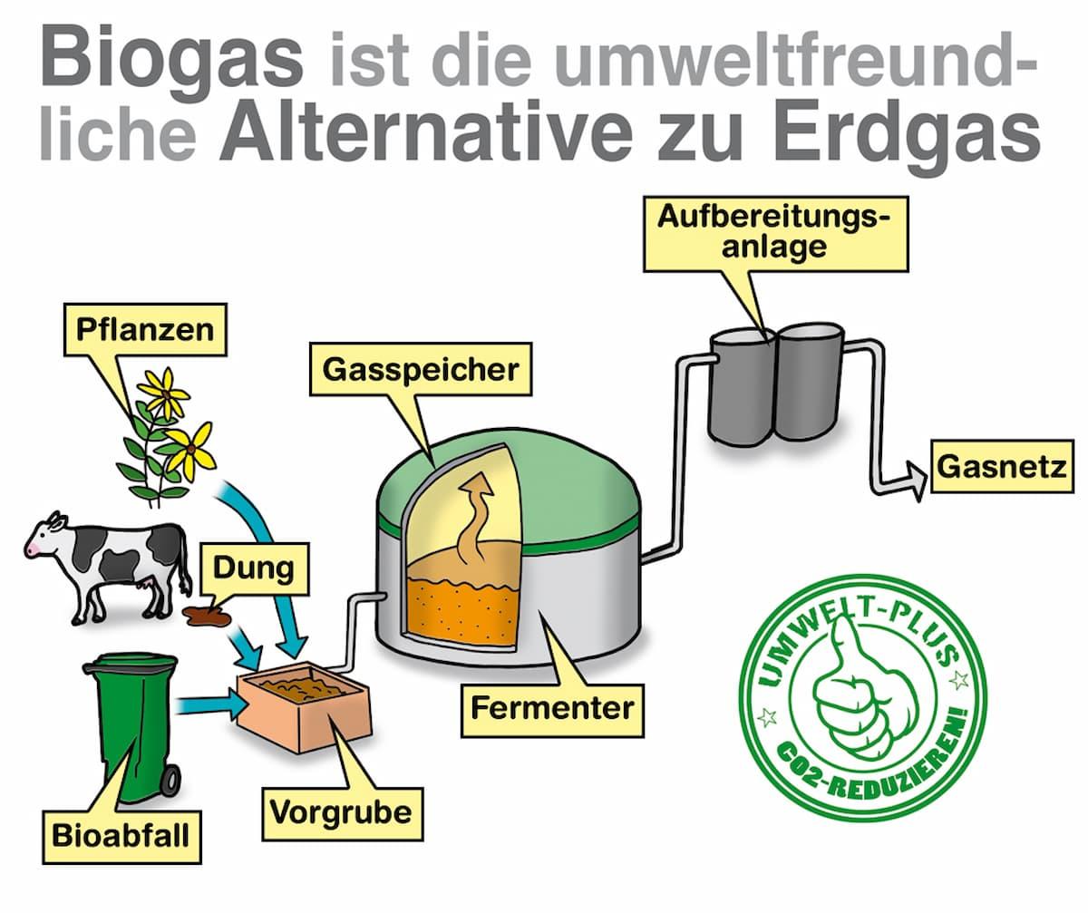 Biogas ist eine umweltfreundliche Alternative zu Erdgas
