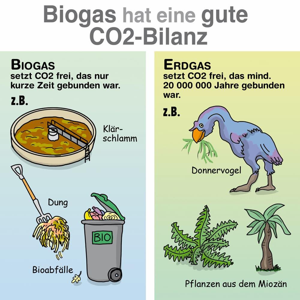 CO2-Bilanz: Vergleich Biogas und Erdgas
