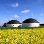Strom aus Bioenergie