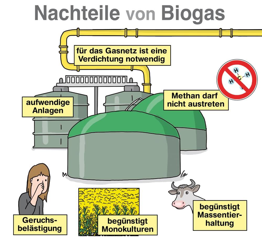 Nachteile von Biogas