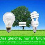 Aktion: Energiesparlampen Box zum Sonderpreis
