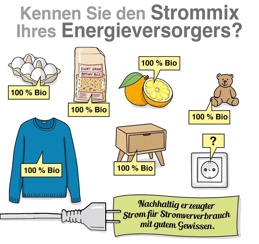 Kennen Sie den Strommix Ihres Energieversorgers?